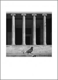 """#17. Атина, 2012, цикъл """"Той"""" пигментен отпечатък, 70 x 50 см., рамка цена: 220лв."""